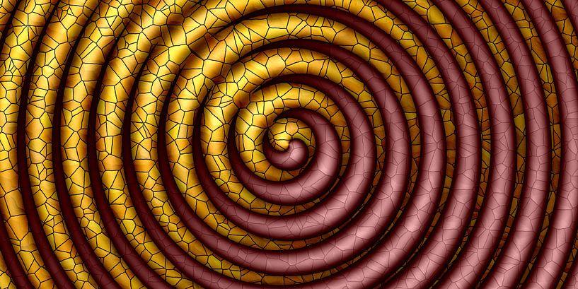 Kleurrijke spiraal van Marion Tenbergen