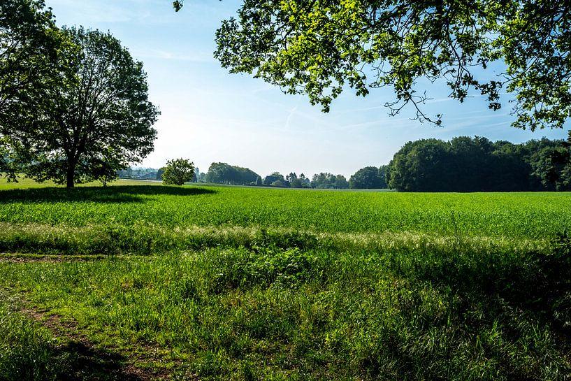 Landschap bij het Bergherbos van Jaap Mulder