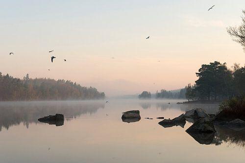 in Sweden... Lake *early morning mood* van wunderbare Erde