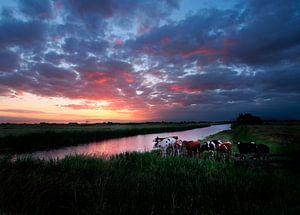 Hollands schilderwerk in de polder. van Teun IJff