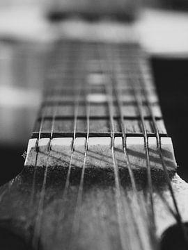 Tonart einer Banjo-Mandoline von Martijn Wit