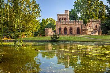 Moosburg im Biebricher Schlosspark van Christian Müringer