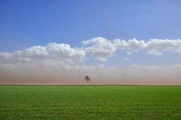 Sandsturm jagt über die Felder von Fred van Bergeijk