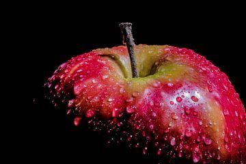 De hollandse appel van Celina Dorrestein