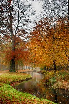 Herfst landgoed Groeneveld Baarn