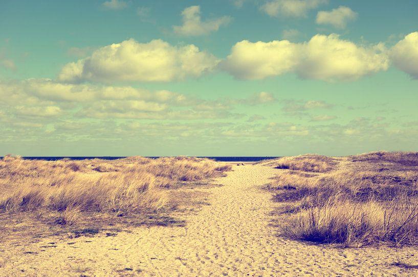 Blote voeten op het strand van Tanja Riedel