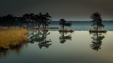 Reflectie in het water van René Groenendijk