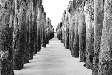 Stelzenköpfe an der Opalküste, Frankreich von Rietje Bulthuis