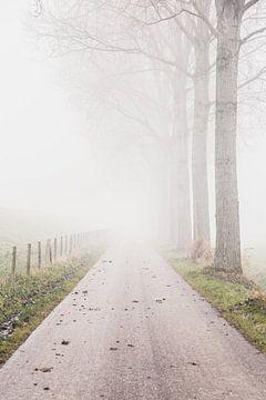 Een boerenweggetje in de mist van Petra Brouwer