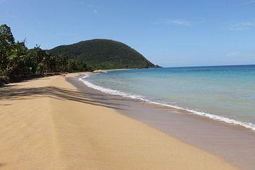 Strand Guadeloupe van Anita Moek