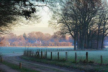 marcher un jour d'hiver sur Tania Perneel