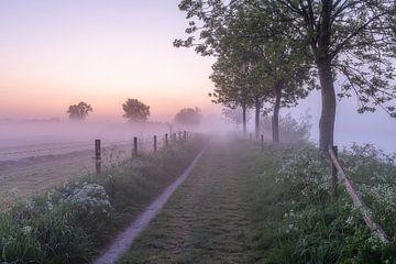 Taufahrt an einem nebligen Morgen entlang der Leie in Wevelgem