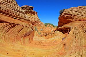 The Wave, South Coyote Buttes