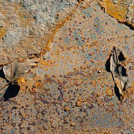 Rusty Leaves VIII van LYSVIK PHOTOS