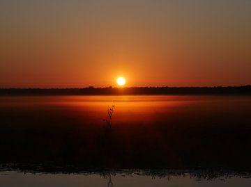 Sonnenuntergang, Feuchtgebiete, Australien von Liefde voor Reizen