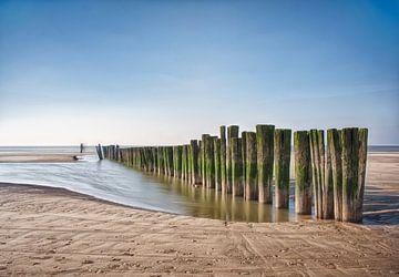 Strand landschap aan zee van