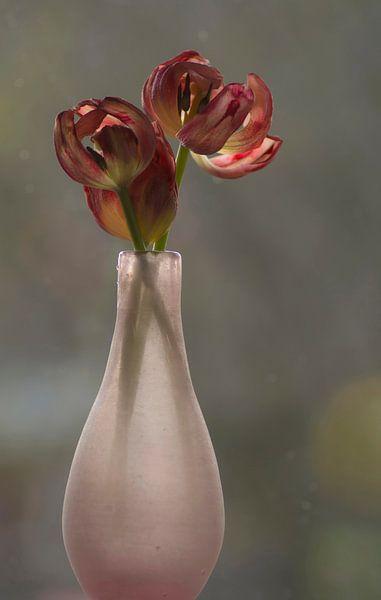 Vaas met uitgebloeide tulpen van Birgitte Bergman