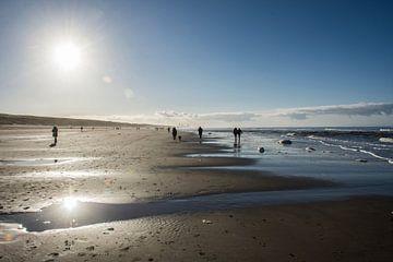 Egmond aan Zee Rétro-éclairage sur Jackie van der Meulen