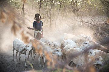 Fille rentrant à la maison avec ses chèvres en Éthiopie. sur Photolovers reisfotografie