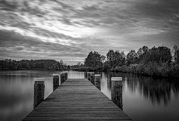 Gerüst Brielse-See in Schwarz-Weiß von Marjolein van Middelkoop