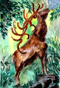 Alter Hirsch ruft in den Wald