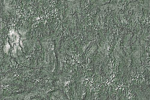 Green Relief Pattern Abstract van