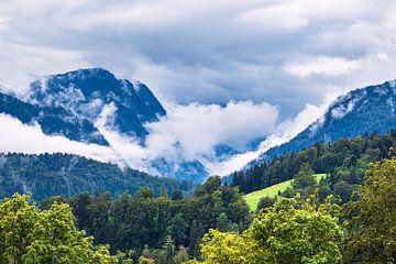 Landschaft mit Bergen und Bäumen im Berchtesgardener Land von Rico Ködder