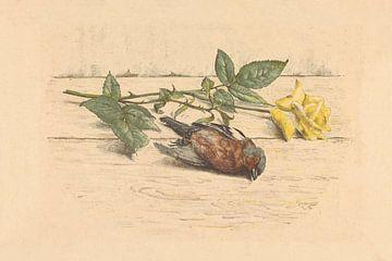 Dode vink liggend naast een roos van Willem Roelofs (II), 1884 - 1940