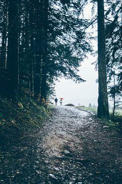 Wandelen in de regen van Patrycja Polechonska