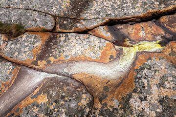 kustlandschap abstract Zweden van Ko Hoogesteger