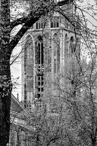 tien voor drie, de Domtoren van Utrecht in de lente van