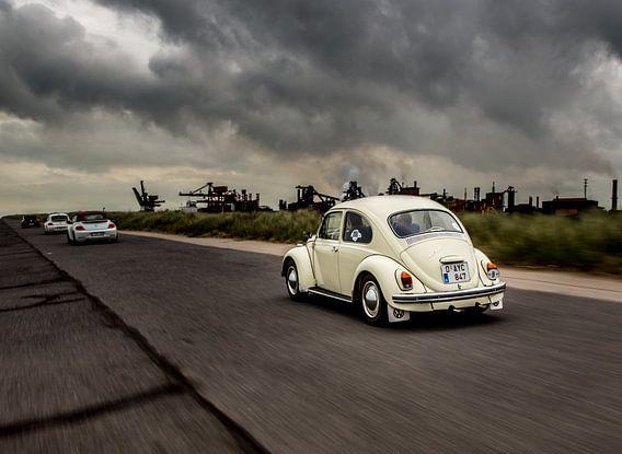 Beetle rolling