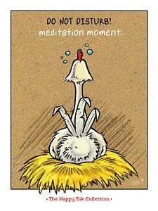 Tok Meditation van