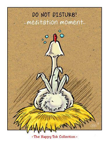 Tok Meditation von Stan Groenland