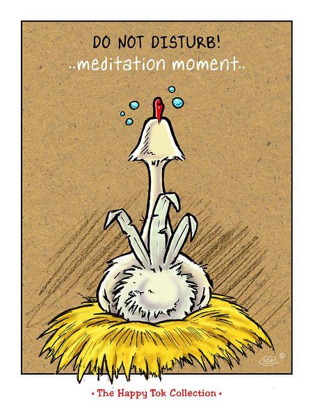 Tok Meditation van Stan Groenland