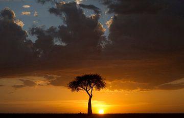 Ondergaande zon op de savanne van de Masai Mara, Kenia. van Louis en Astrid Drent Fotografie