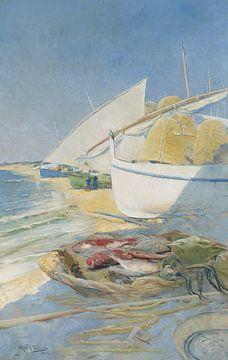 Arcadi Mas i Fondevila Fischerei