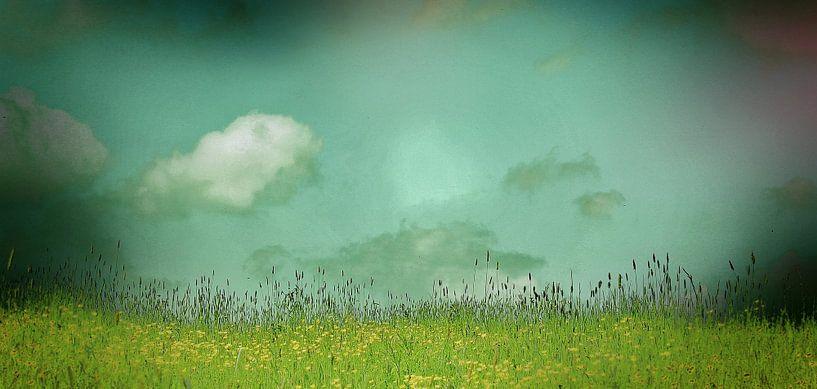 Daydreaming in the meadow van Stephanie Köhl