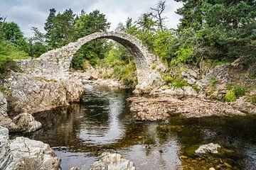 Brug bij Carrbridge in Schotland von Floris van Woudenberg