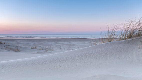 Pink Dunes 3