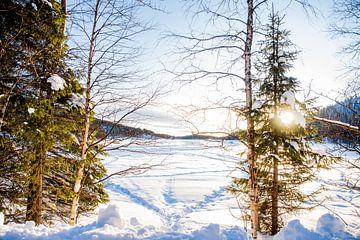 Fins Lapland van Anita Kabbedijk