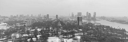 Winter in Het Euromastpark in Rotterdam (formaat 3/1)