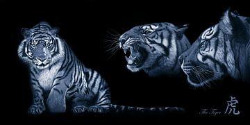Een tijger van