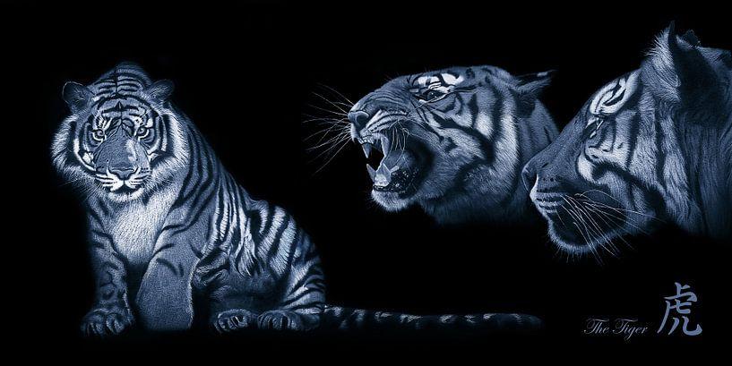 Een tijger van Monika Jüngling