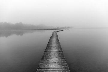 Polster im Nebel von Alex Riemslag