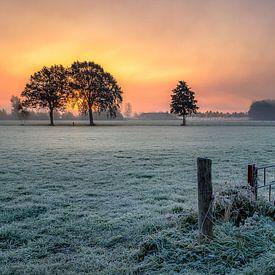 Cold sunrise van Patrick Rodink