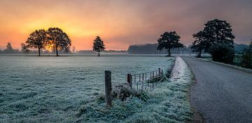 Cold sunrise von Patrick Rodink