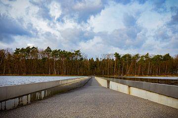 Radfahren durch das Wasser von Johan Mooibroek