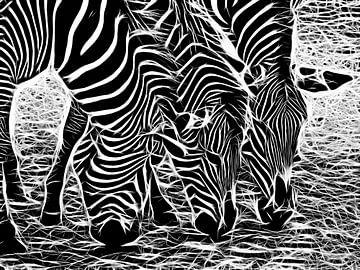 Zebra van Karl-Heinz Lüpke