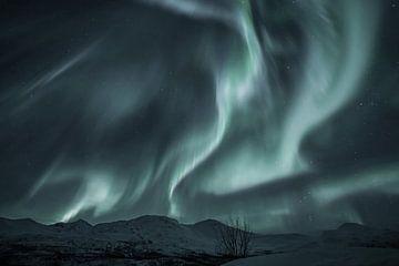 Nordlicht - Solar storm 1 von